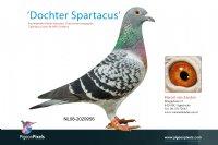 Foto 1 Dcht Spartacus (9e NPO)