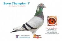 Foto 1 Zoon Champion 1 (9e en 10e NPO)