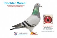 Foto 1 Dochter Marco (3e NPO Bourges)