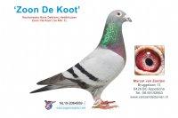 Foto 1 Zoon De Koot (1e Afd. 7)
