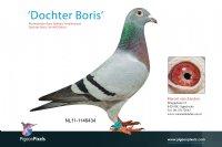 Foto 1 Dochter Boris (5e NPO Blois)