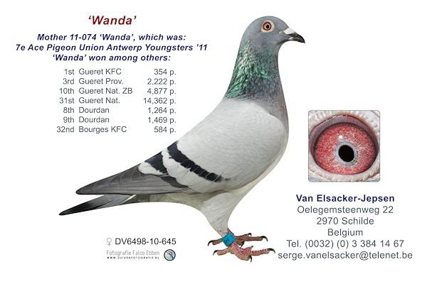 DV6498-10-645