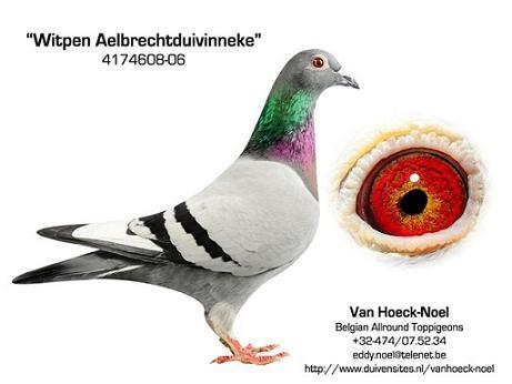 608-06 Marcel Aelbrecht