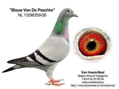 059-06 Jan vd Pasch
